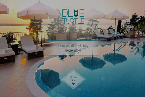 blue-turtle-logo